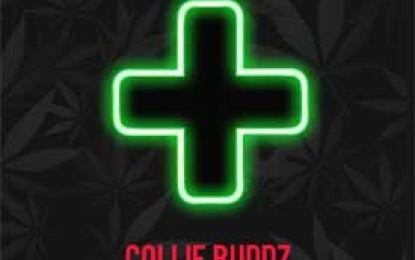 "Collie Buddz :: ""Prescription"""