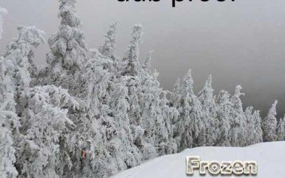 Dub Proof :: Frozen Dub